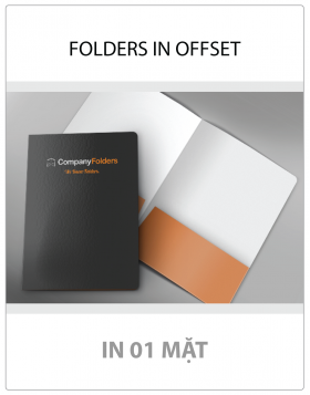 FOLDERS IN OFFSET (01 MẶT)